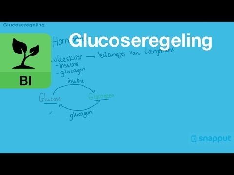 Biologie - Glucoseregeling