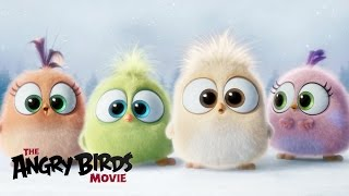 Video The Angry Birds Movie - Season's Greetings from the Hatchlings! download MP3, 3GP, MP4, WEBM, AVI, FLV September 2018