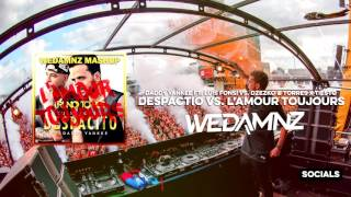 Daddy Yankee ft. Luis Fonsi vs. Tiësto - Despacito vs. L'Amour Toujours (WeDamnz Festival Mashup)