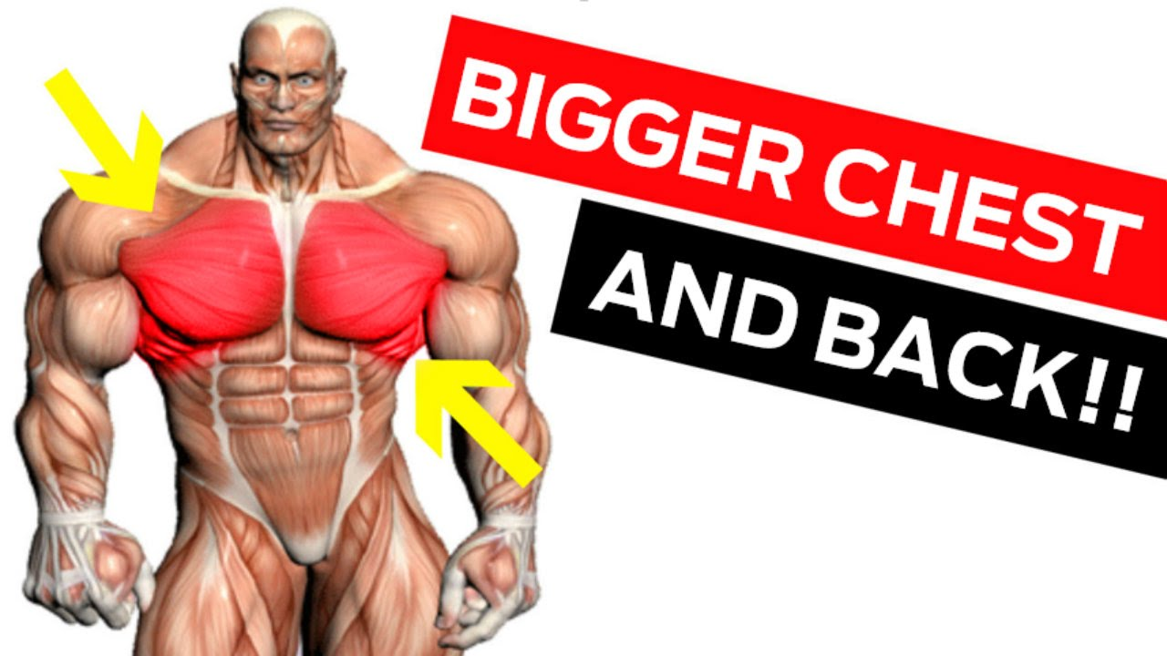 Chest & Back Workout for Mass: 6 Must-Do Chest Exercises & Back ...