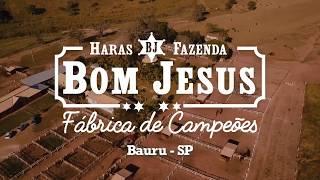 Comercial no Globo Rural
