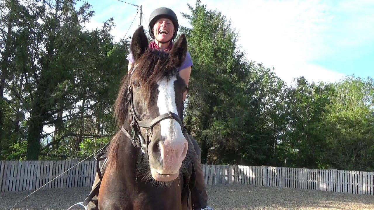 Wie mein Pferd selbstbewusst und sicher zu springen lernt - Teil 3: Übungen für Pferd und Reiter