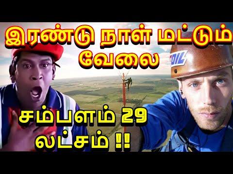 Download இரண்டு நாள் வேலைக்கு 29 லட்சம் சம்பளம் | KDLT- TV Tower Climber | Tower Bulb Changer Salary Tamil
