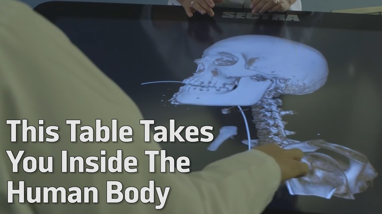 This Table Takes You Inside The Human Body - YouTube