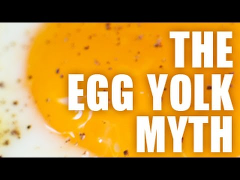 The Egg Yolk Myth