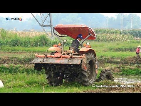 KUBOTA M6040 GIÀN MACHIO KHỦNG SIÊU KHỎE MIỀN TÂY may cay kubota tractor video - cuoc song mien nui