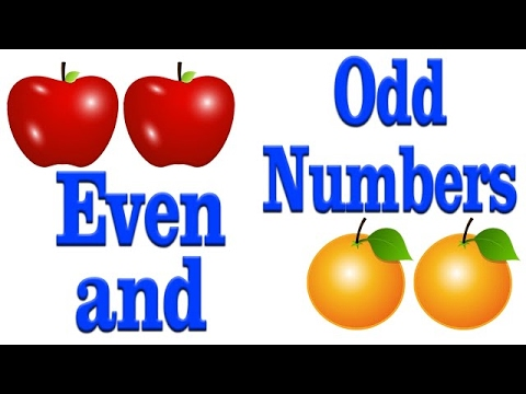 Even and Odd Numbers - YouTube