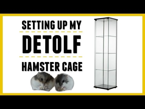 SETTING UP MY DETOLF HAMSTER CAGE!