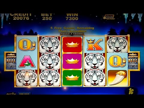 White Tiger Slot - NICE WIN BONUS! - 동영상