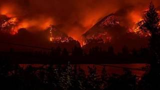 Jas Davis for Portland City Council   On Climate Change