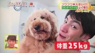 Instagram→http://Instagram.com/s_poodle_mukku 番組ラストにはサマー...