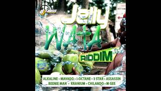 Alkaline - No Regular (Lilly) [Jelly Wata RIdim] Explicit