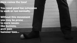 Body and Spine Project Move Better 6  roll stretch and strengthen your feet