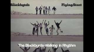 The Blackbyrds ~ Walking In Rhythm
