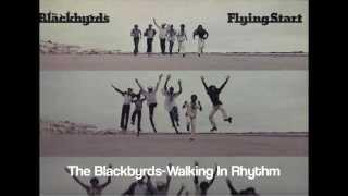 Play Walking in Rhythm