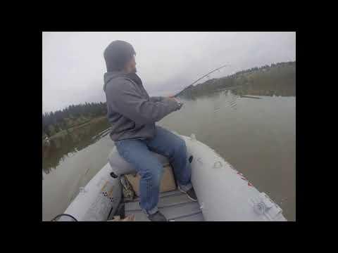 FISH ON: More Trout On Bass Gear At Lacamas Lake