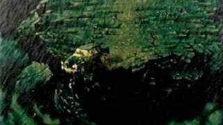 Space — Ballad of Tom Jones ft. Cerys