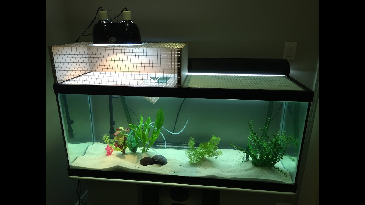 Above tank basking turtle dock youtube for How to find a good builder in your area