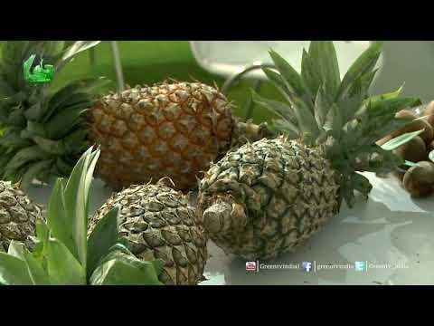 Reena Shrivastwa, Additional GSM Organics -NERAMAC In Organic World Congress 2017 On Green TV
