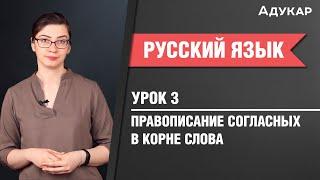 Правописание согласных в корне слова| Русский язык