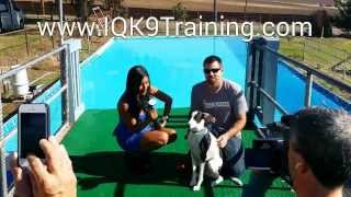 'soldier' Interview With Fox Sports | Go Team 21 | Oceanside Dog