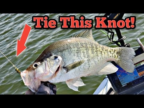 Absolute Best Crappie Fishing Knots .. Loop Knot /Clinch Knot Tutorial