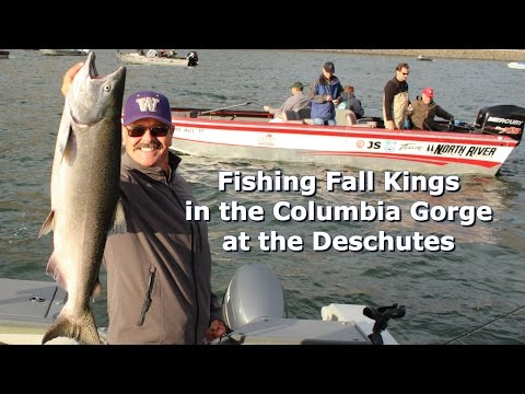 Fishing Fall Kings in the Columbia River Gorge at the Deschutes
