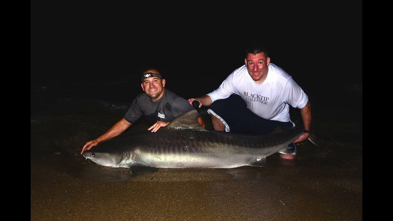 Tiger shark 9 foot wilmington nc jun 2015 youtube for Shark fishing nc