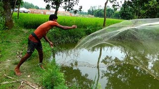 Net Fishing | Catching Lot of Fish With Cast Net | net fishing in the village (Part-27)