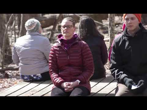 Mindfulness: A walk with Dorothy Ibes