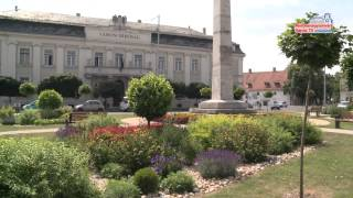 Virágos Magyarország - regionális zsűri