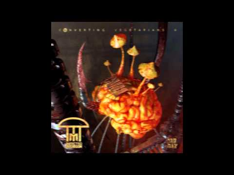 Infected Mushroom - Pink Froid [HQ Audio]