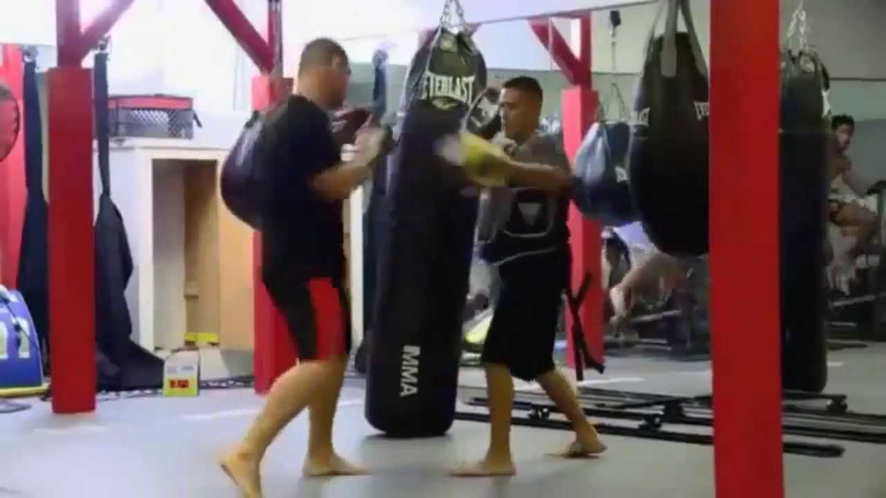 UFC: Cain Velasquez - Training Highlights