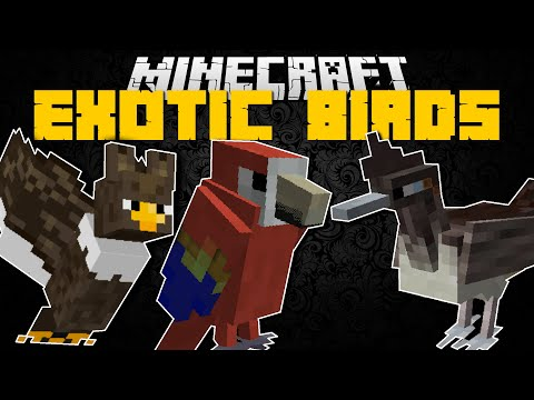 Minecraft EXOTIC BIRDS MOD!! (FIND ALL THE MISSING BIRDS) Mod Showcase