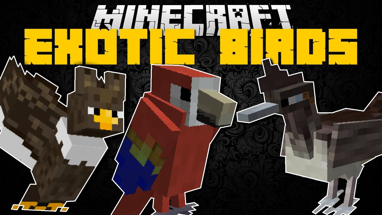 Minecraft Exotic Birds Mod Find All The Missing Birds Mod