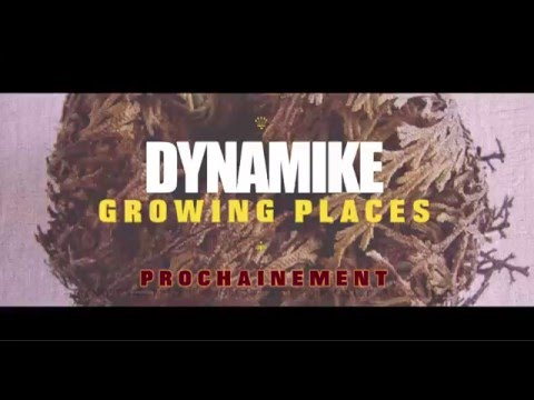 "Dynamike ""Growing Places"" TEASER"