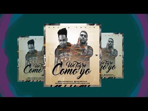 AGL And Yulio - Un Tigre Como Yo | Official Lyric Video