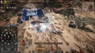 Black Desert Online-Plum Grinding Bad???