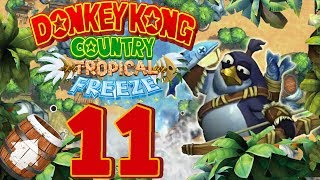 Let's Play Donkey Kong Country Tropical Freeze Part 11: Swing dich in die Fails