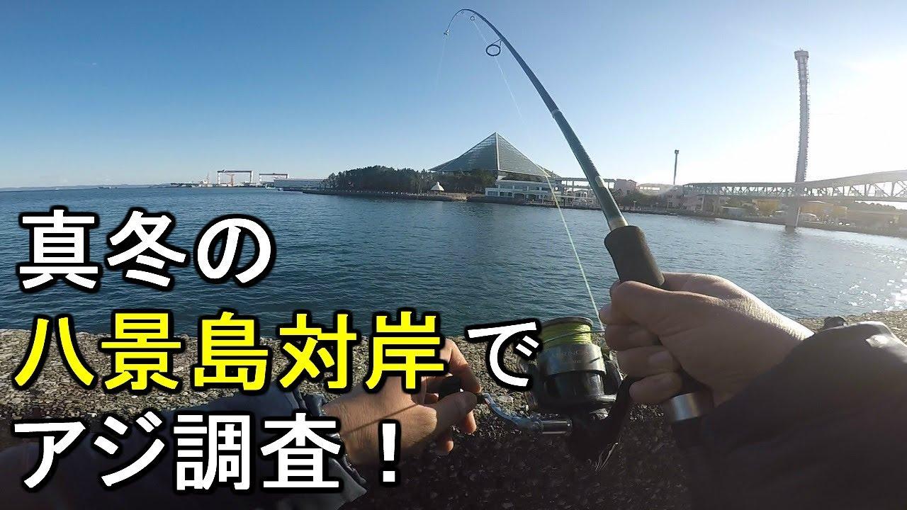釣り場 八景島 福浦岸壁ヘリポート横の釣り ll