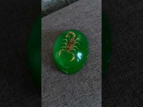 зеленый камень скорпион🦂