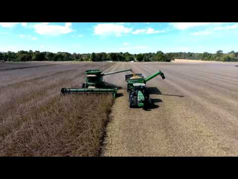 Dave's Soybeans