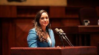 Informe de Gestión Parlamentaria 2013 - 2017