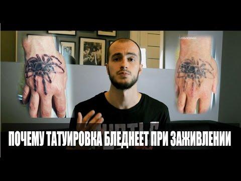 Почему татуировка бледнеет при заживлении