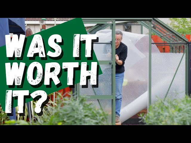 Bubble wrapping an unheated greenhouse |  Was it worth it?
