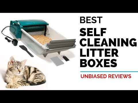 10 Best Self Cleaning Litter Boxes | Automatic Litter Boxes [For Your CAT] | Review & Ranking