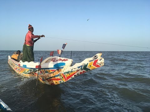 Fishing By Pirogue, Off Gambia, West Africa (41 Mins Duration)