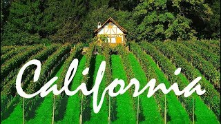 One Day In Northern California | Wine & Beer Country