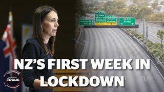 Inside Isolation: New Zealand's First Week In Lockdown | Nzherald.co.nz