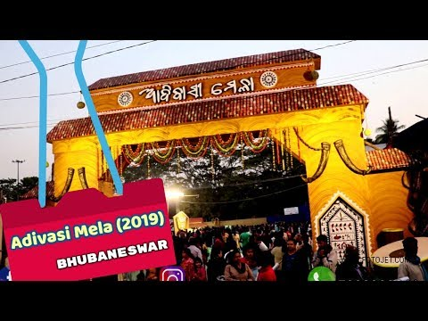 Adivasi Mela 2019|Tribal Exhibition| Bhubaneswar|Odisha|Street Food India